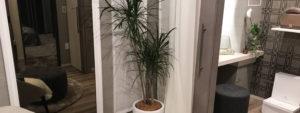 観葉植物レンタル事例