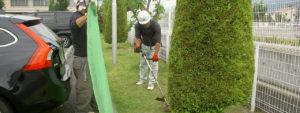 草刈り・芝刈り事例